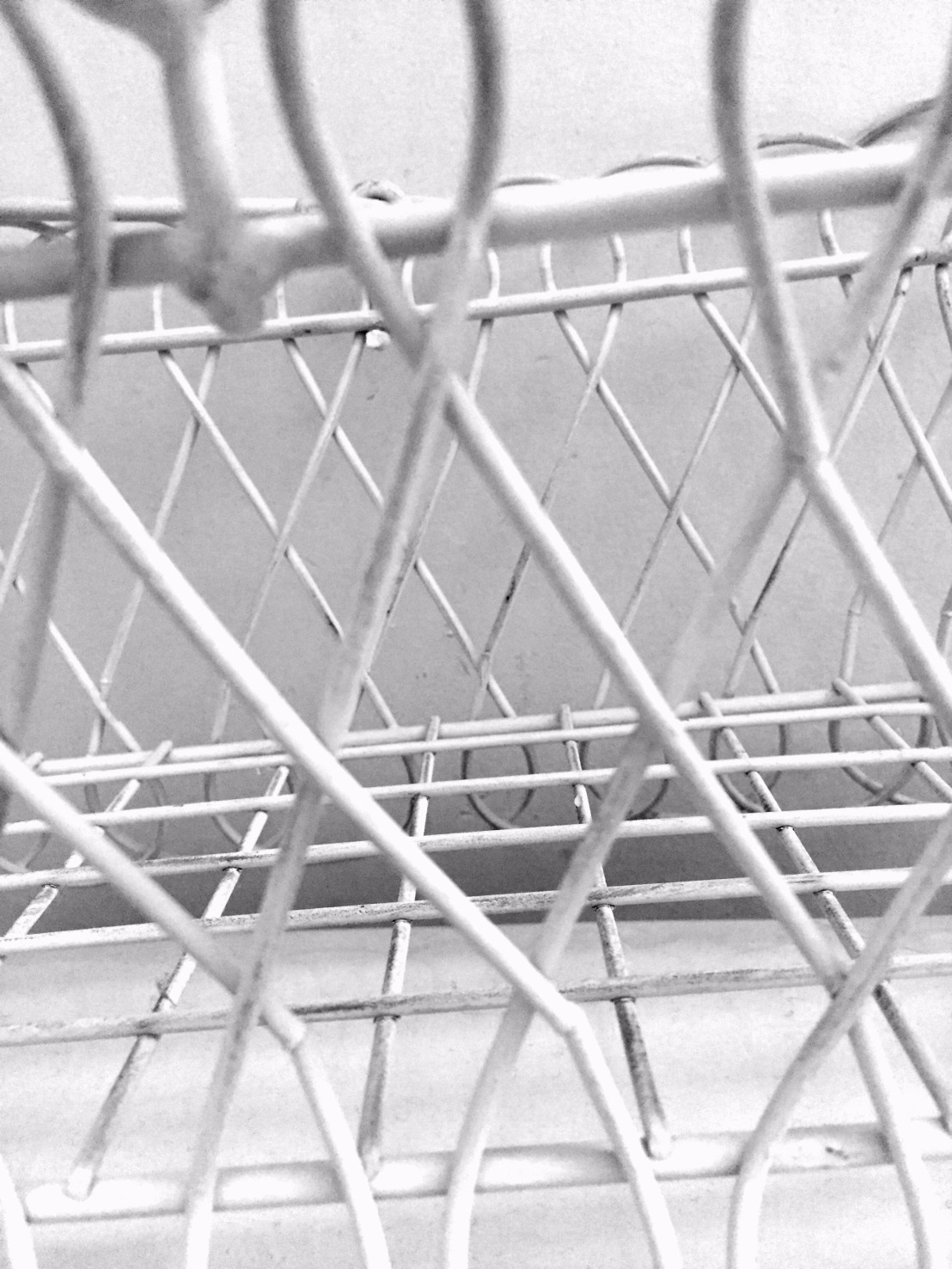 bw wire basket