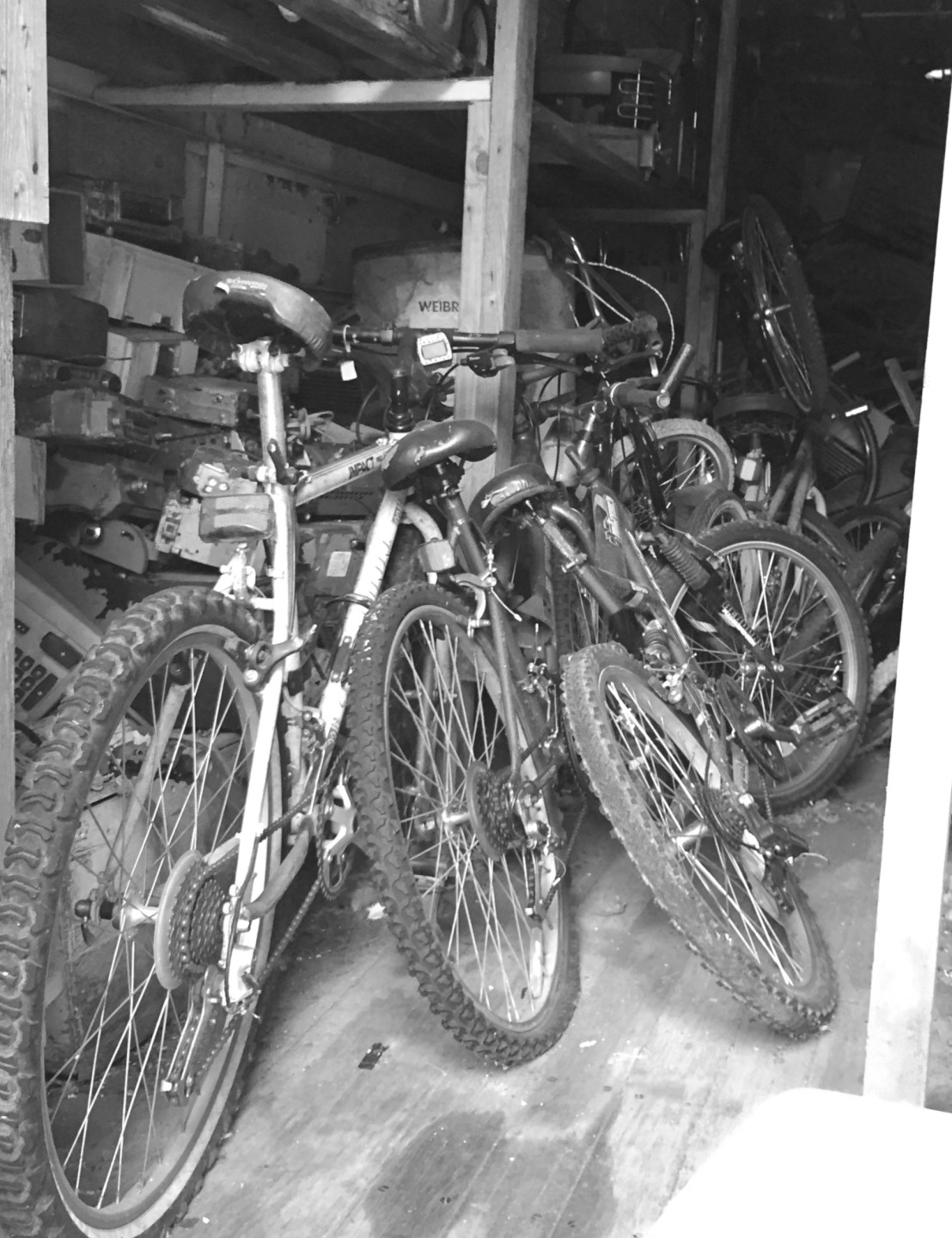 bw bikes in garage