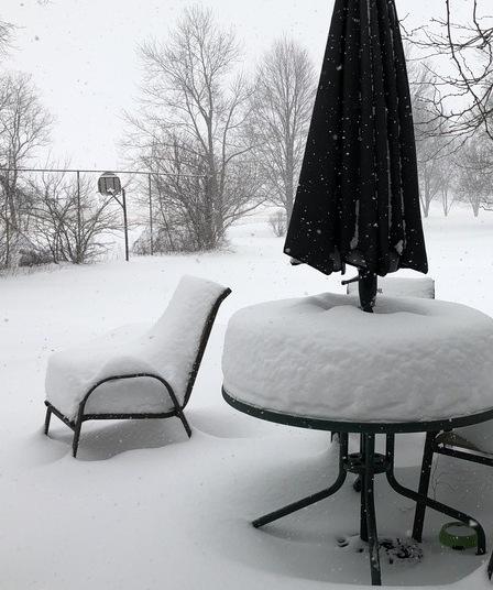 photo a day snowfall 1